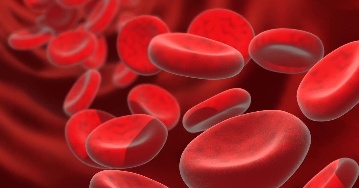 Gene study suggests healthy aging linked to blood iron levels