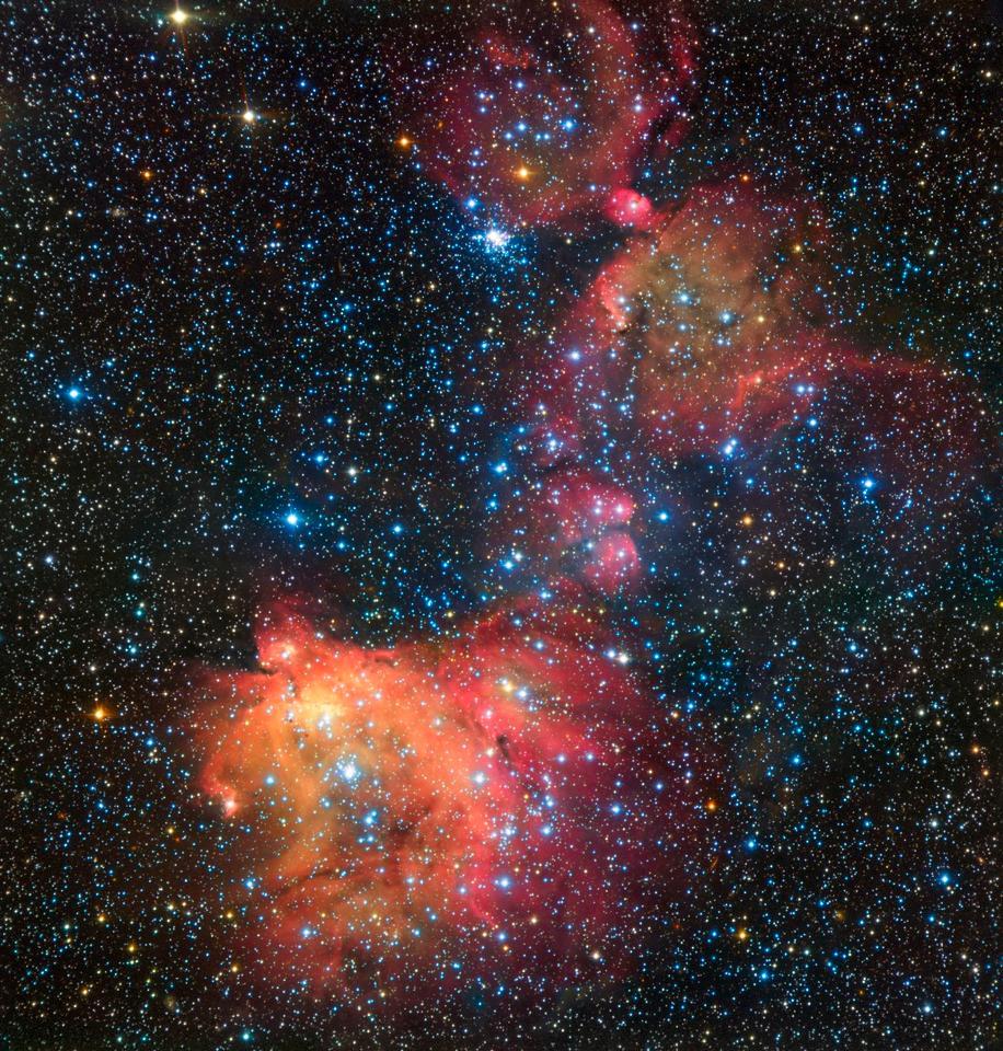Image of emission nebula N55 as captured by the ESO's VLT