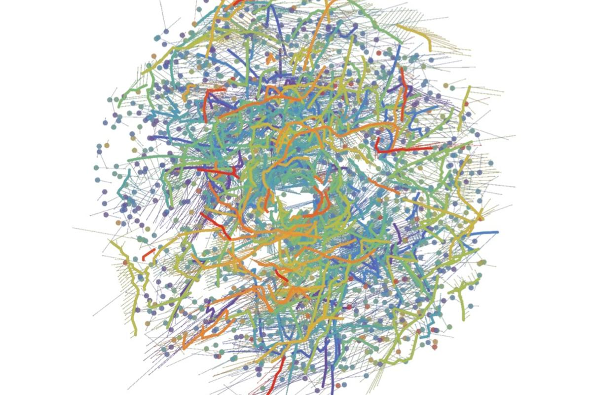 In this new galactic map, different colors represent groups of stars that are traveling together, after being born together