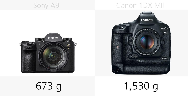 Sony A9 vs  Canon 1DX Mark II