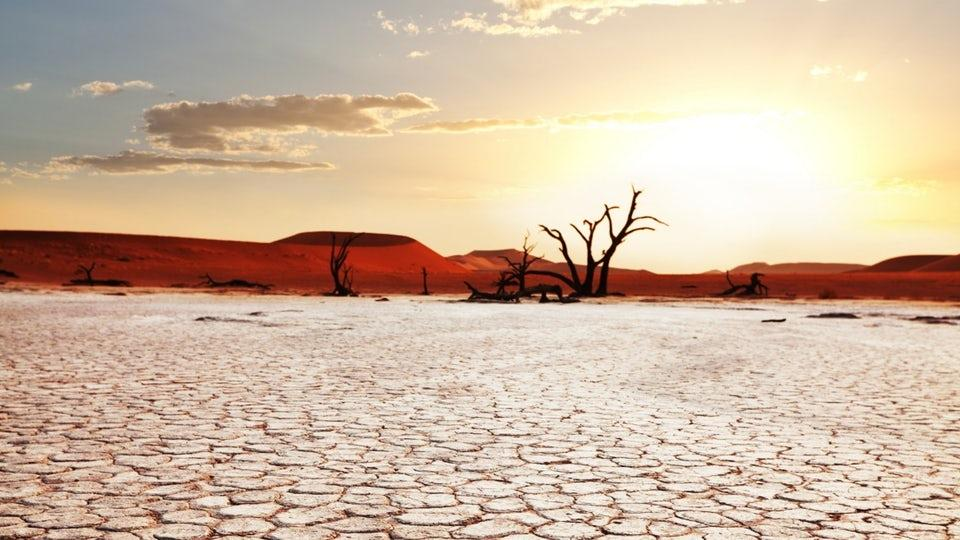 Satellite data combined with new modeling has given scientists the ability to more accurately predictdrought