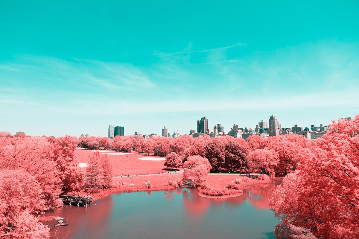Paolo Pettigiani's series Infrared NYC is a glorious examination of New York's Central Park that uses infrared filters to transform the greenery into a pink and red wonderland