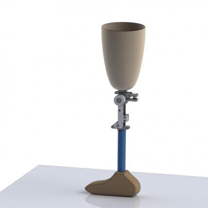 A rendering of the knee, incorporated into a prosthetic leg