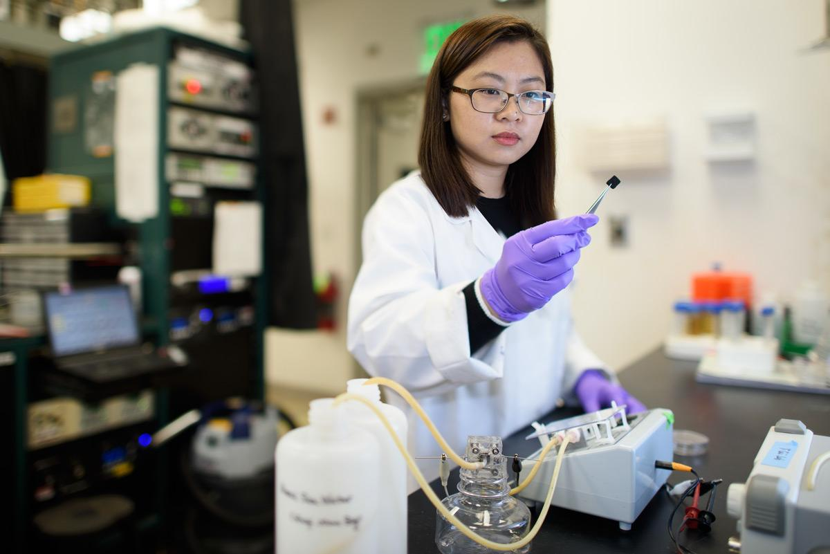 Chong Liu, one of the researchers on the study, with a carbon-amidoxime electrode, used for electrifying the material to improve its efficiency at capturing uranium from seawater