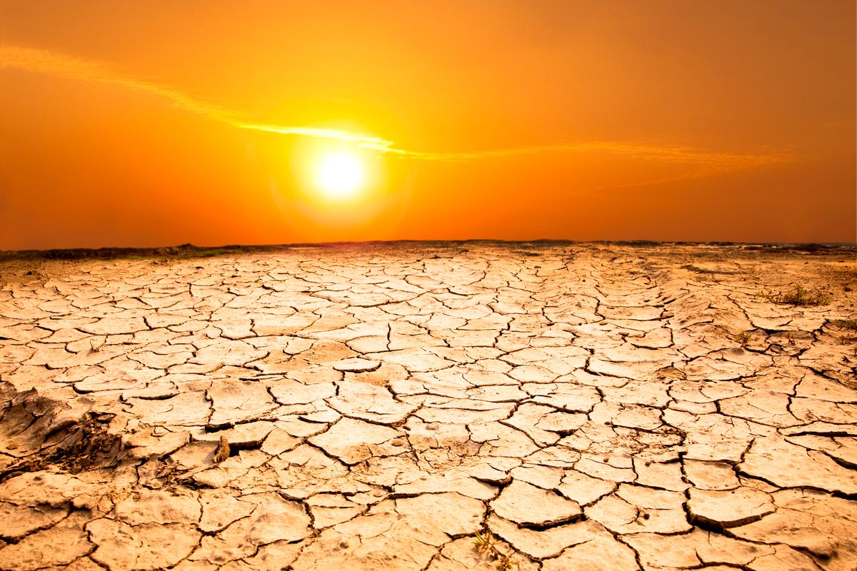 The new IPCC report states that over the next 20 years, human-caused climate change will result in a drastic increase in both droughts and flooding