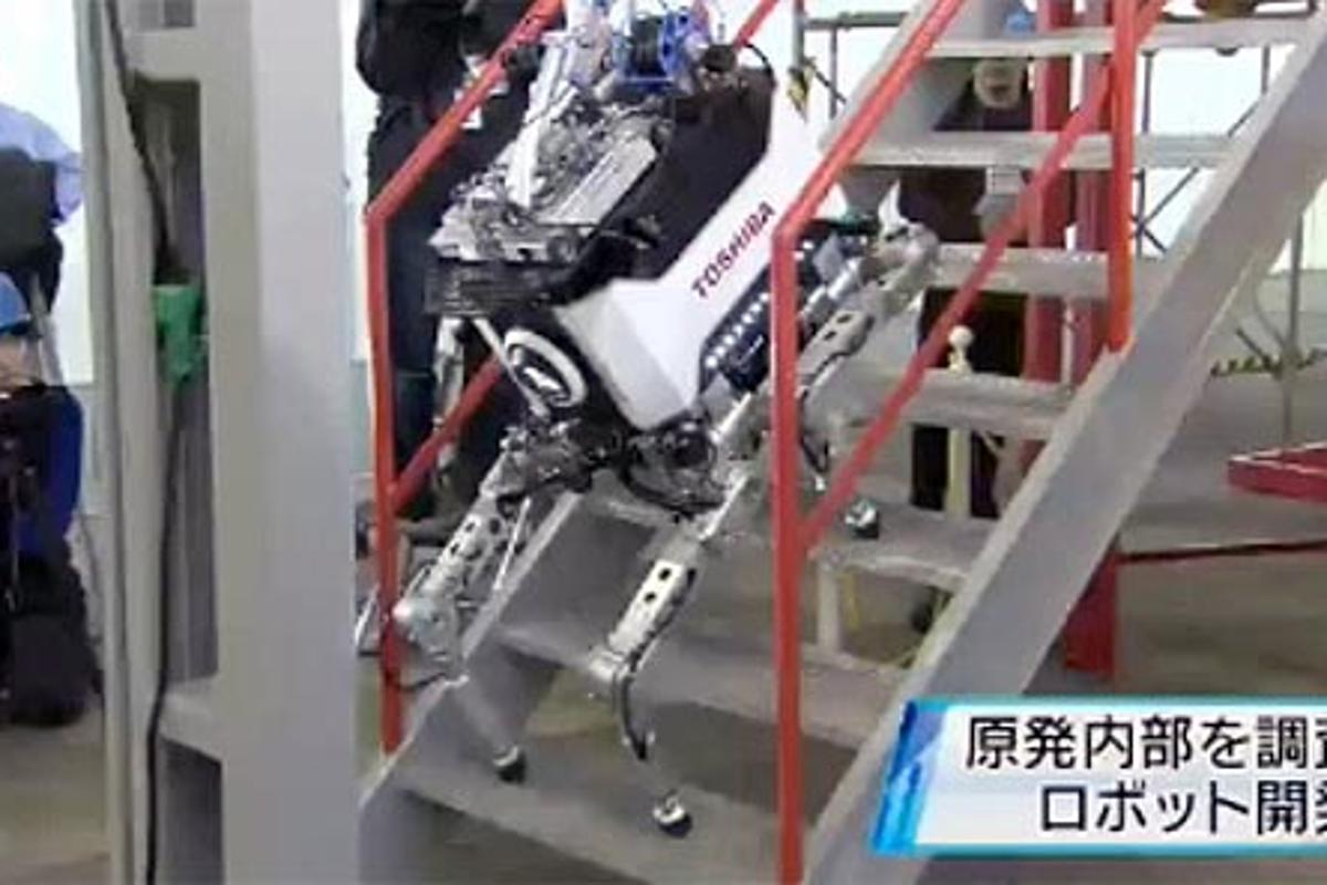 Toshiba's quadrupedal robot climbs stairs in a press demonstration (Photo: NHK)