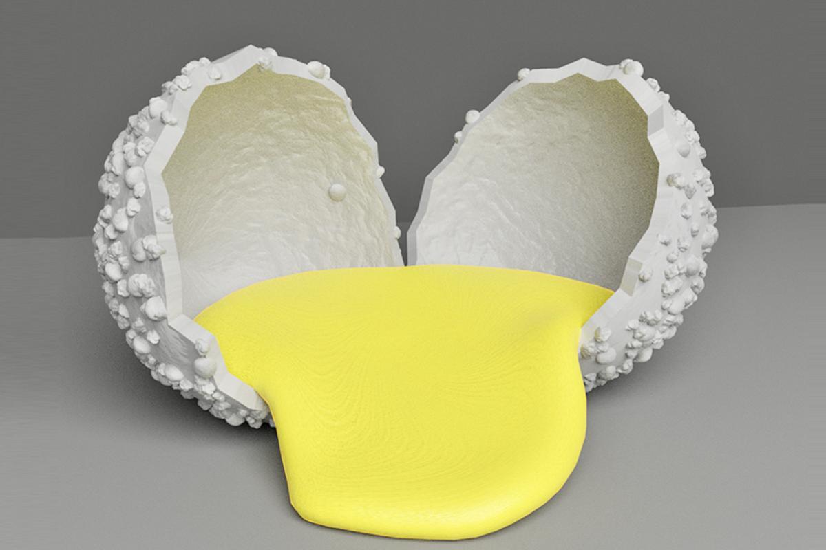 Each polyurea microcapsule contains a liquid catalyst and crosslinker