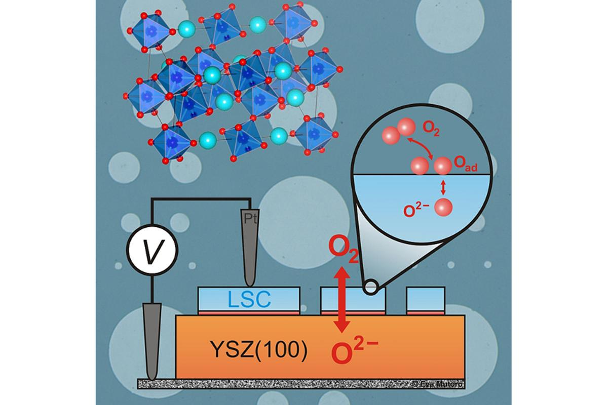 The experimental setup used to measure the catalytic activity of the strontium-substituted lanthanum cobalt perovskite with the circular cutout showing how oxygen molecules are exchanged on the LSC surface (Image: Eva Mutoro)