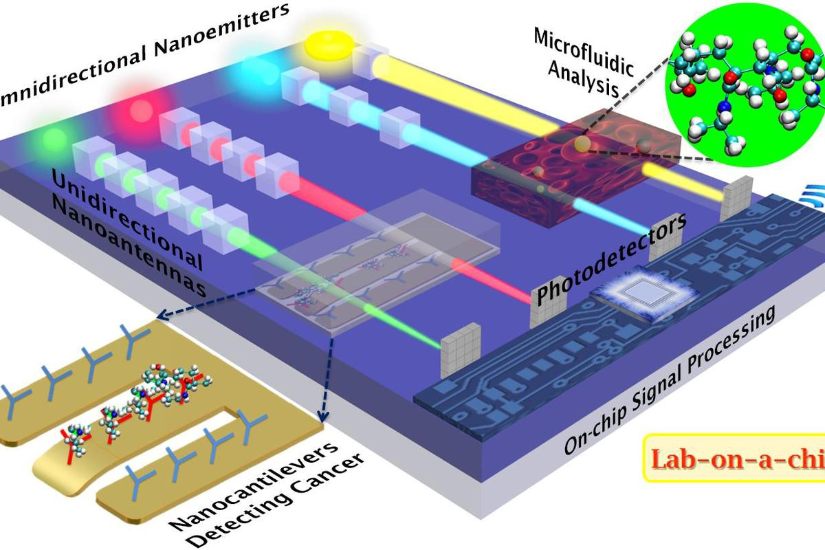 Using nanoantennas to direct light, researchers have created a method to accurately focus light at the nanoscale, with the technology having numerous potential applications, including in lab-on-a-chip devices (Image: D. Sikdar and M. Premaratne/Monash University)