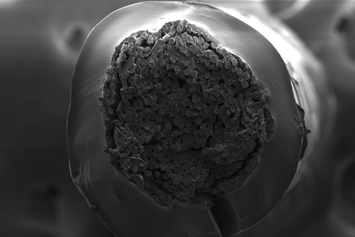 A cross section of the tendon-inspired suture developed at McGill University