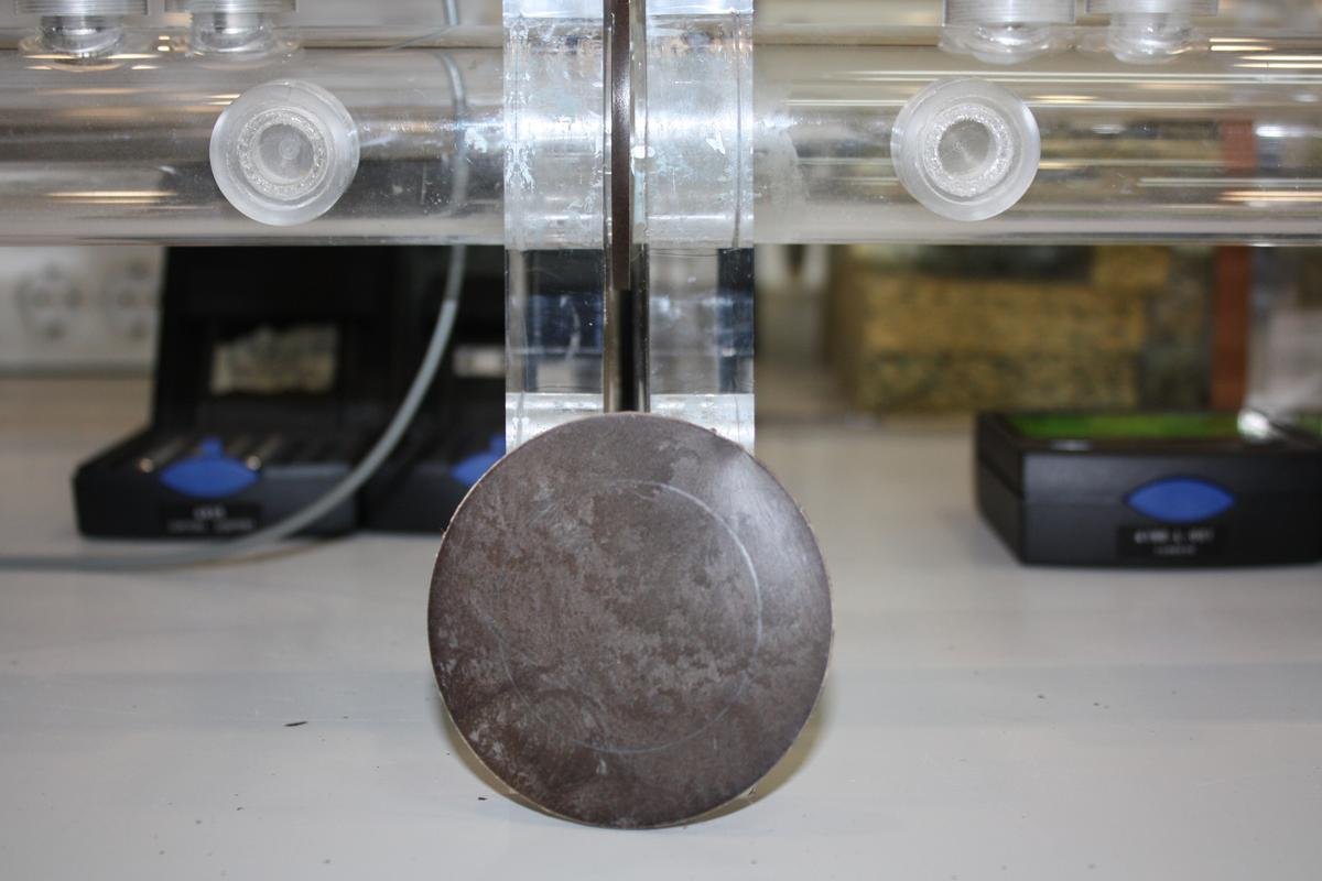 Researchers in Spain have developed new, high-performance acoustic insulation material from the trimmings of orange trees