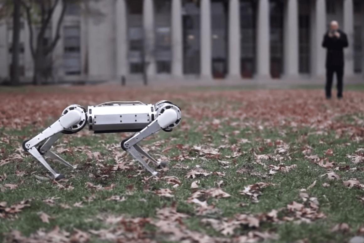 The MIT Mini Cheetah robot has a few tricks up its sleeve