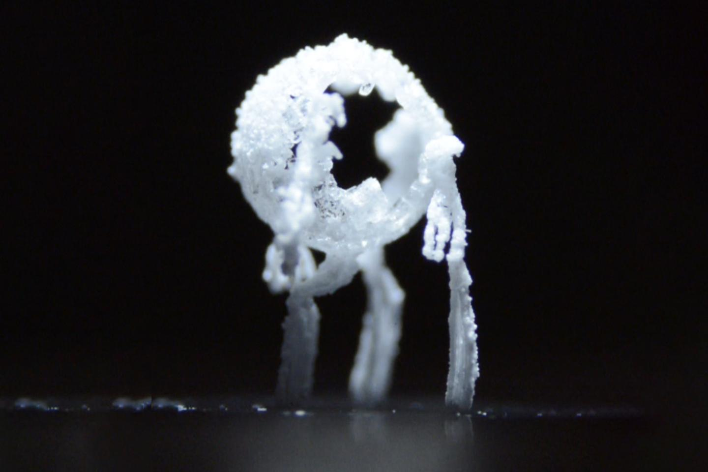 "A ""crystal critter"" forming as salty water evaporates, making for a much easier-to-clean surface"