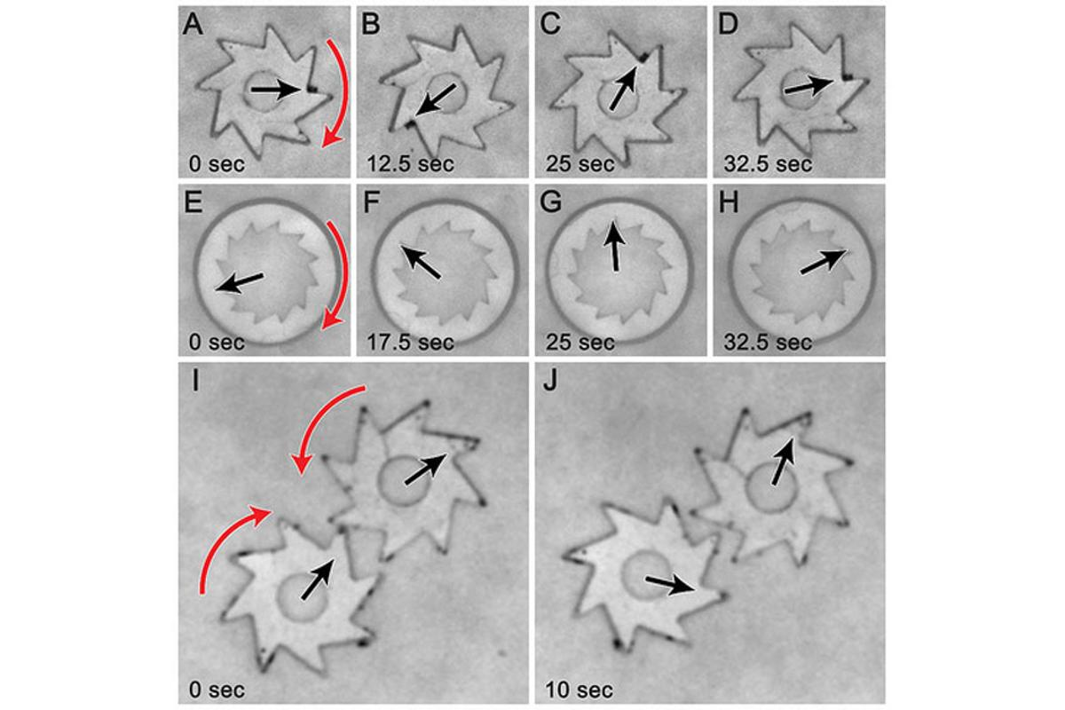 Diagram tracking the movement of gears turned by the bacteria (Image: Igor Aronson/Argonne National Laboratory)