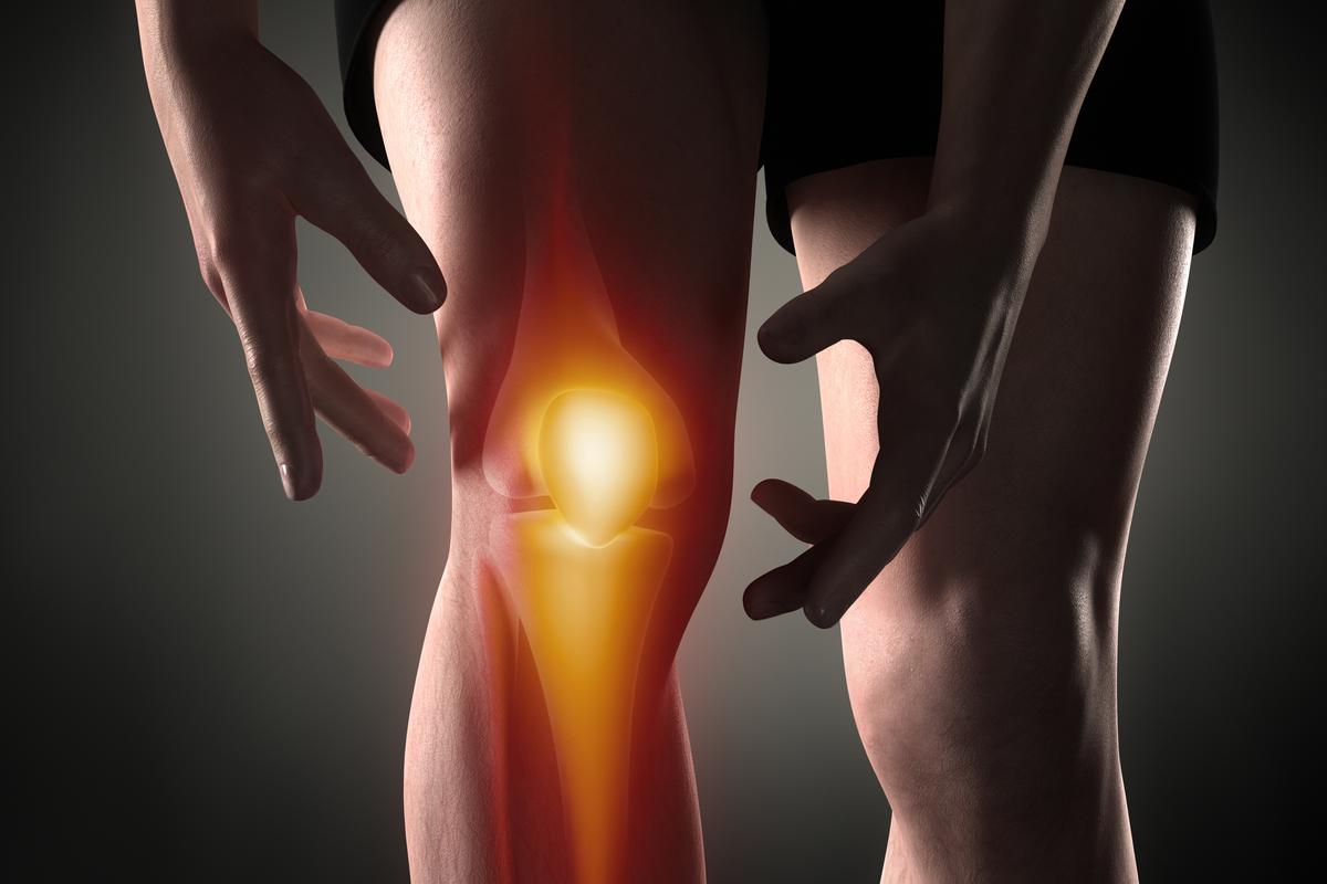 Scientists have used engineered nasal cartilage cells to repair osteoarthritic knees, and their potential might not end there