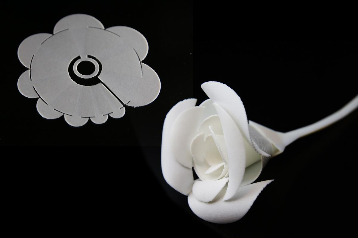 A flat sheet of plastic (top) becomes a three-dimensional rose when heated