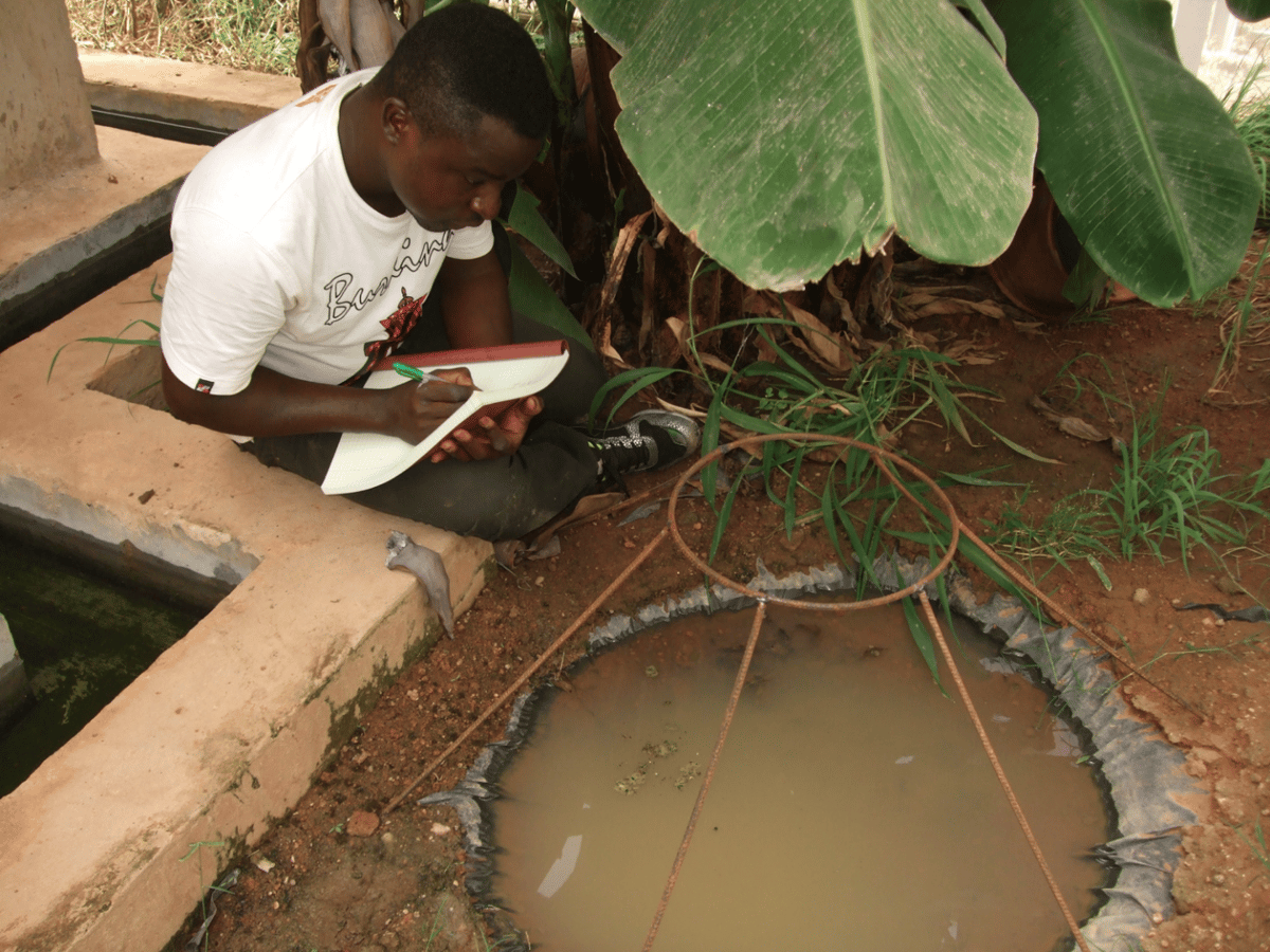 Etienne Bilgo, a co-author of the paper, observes one of the breeding pools in MosquitoSphere where researchers found that a simple application of transgenic fungus on a hanging black sheet safely reduced mosquito populations by more than 99 percent