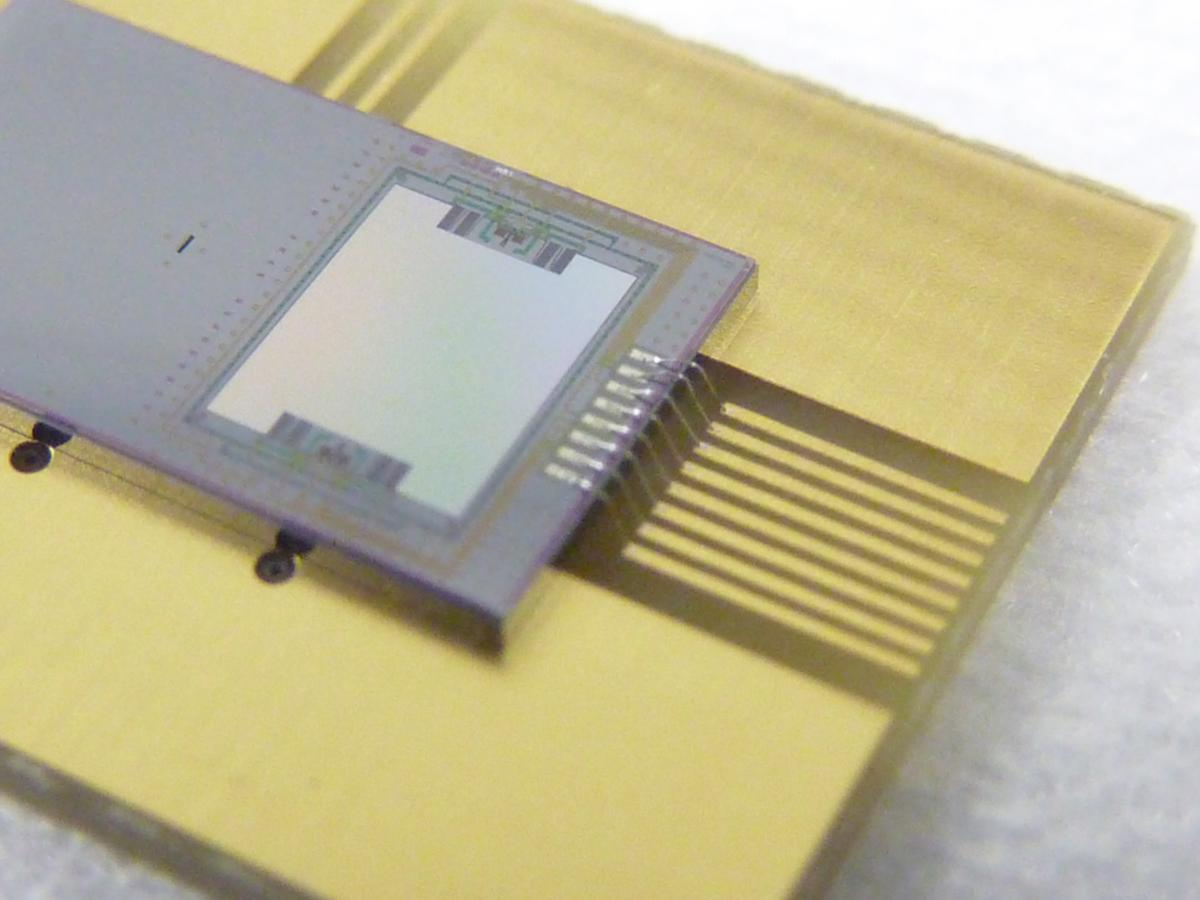 The IPMS spectrometer could one day be integrated into smartphones (Photo: Fraunhofer IPMS)