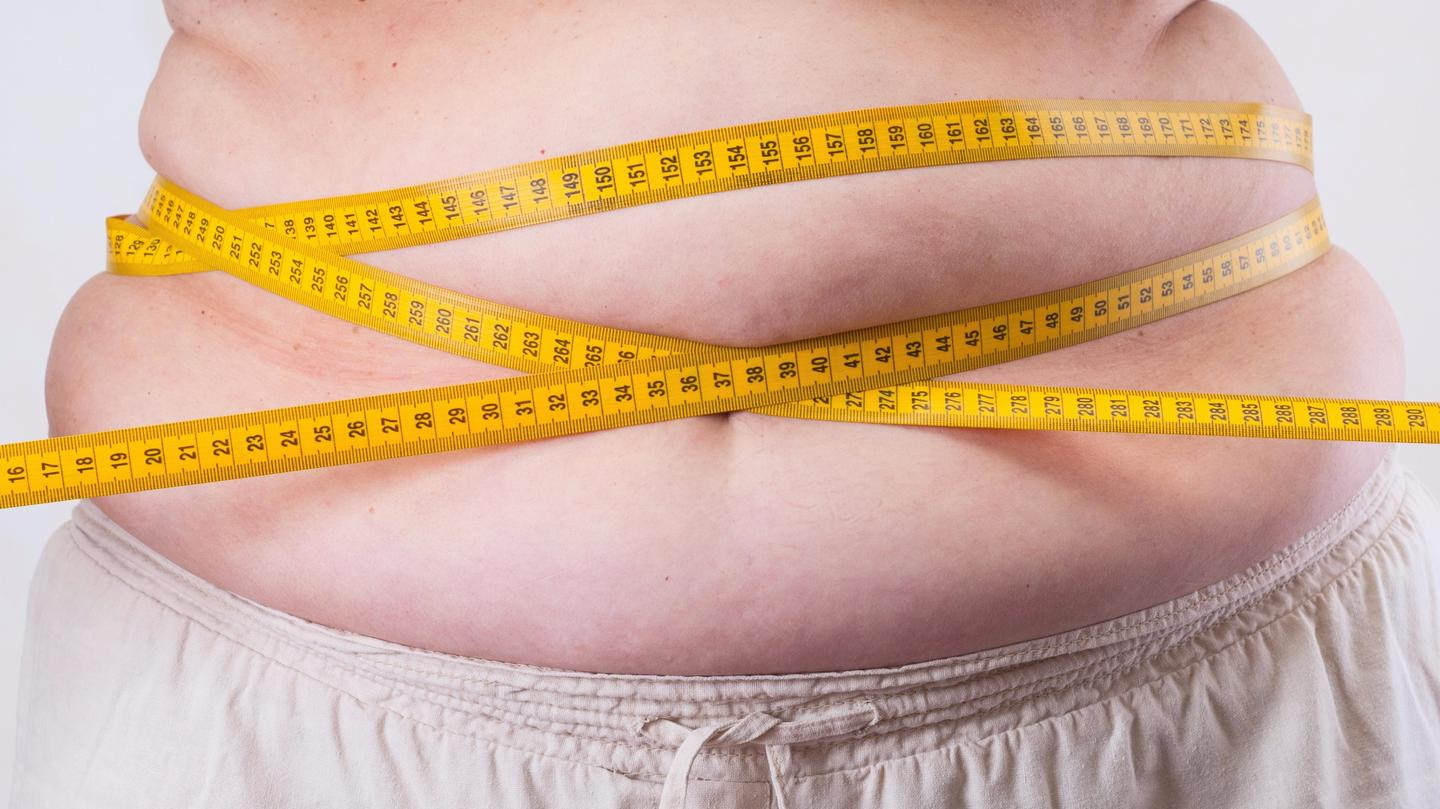 The key mechanism in the brain that controls energy expenditure and fat production has finally been uncovered