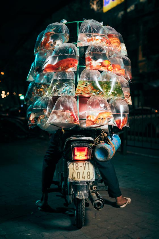 """Finalist, Travel. """"A Fish Seller Displays His Goods"""". A man poses with his scooter in Hanoi with a delivery of pet fish"""