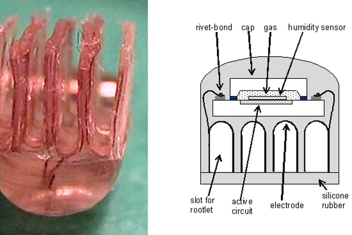 The active electrode book - the four slots close in around the nerve roots like the pages of a book