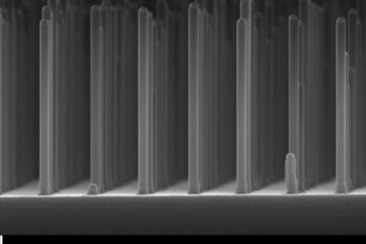 A close-up look of gallium phosphide nanowires at the heart of the prototype solar fuel cell