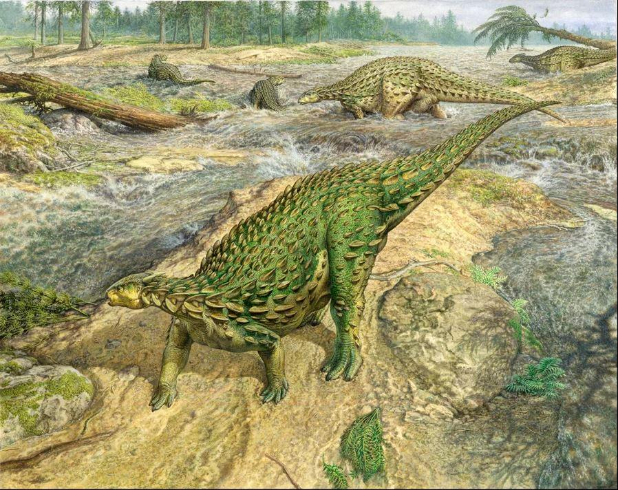 Reconstruction of Scelidoraurus, which has finally been completed after its discovery 162 years ago