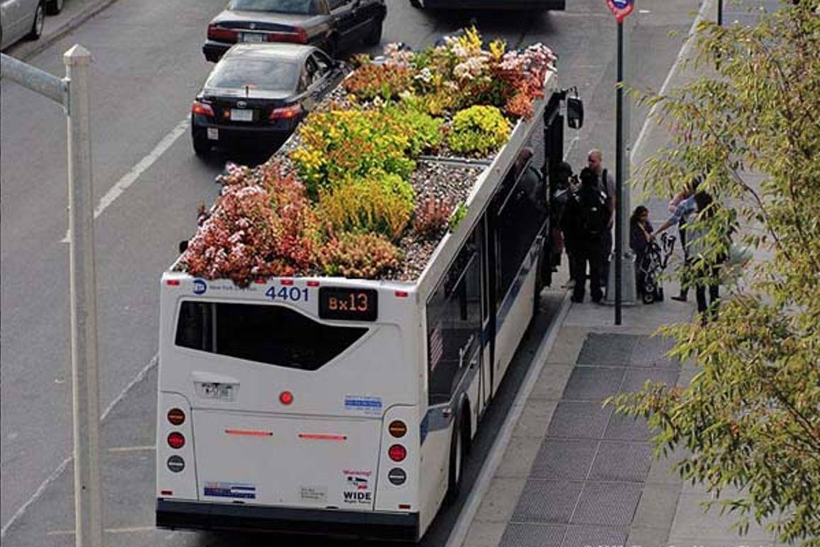 Digital mockup of a bus-top garden (Image: Marco Castro Cosio)