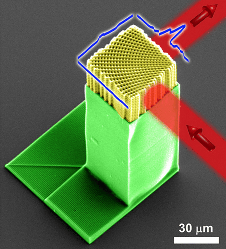 The device resembles a plastic honeycomb (Image: UTEP/UCF)