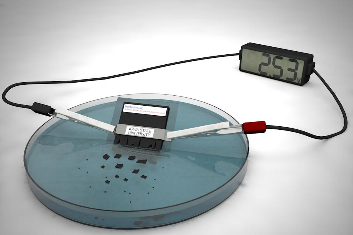 The batterycan power a desktop calculator for approximately 15 minutes, but also dissolves within about half an hour once immersed in water