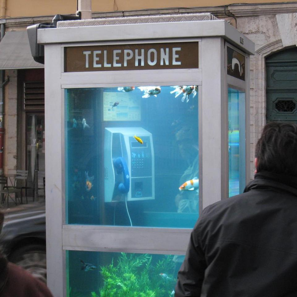The telephone aquarium in Lyon 2007 - with Benoit Deseille