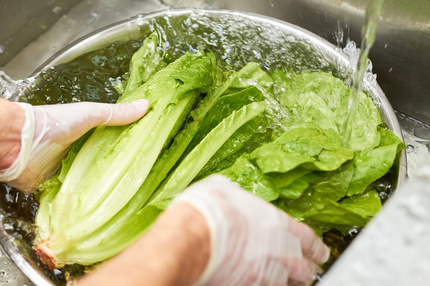 While it's important to rinse leafy vegetables before eating them, the use of regular water alone may not be sufficient to dislodge harmful bacteria