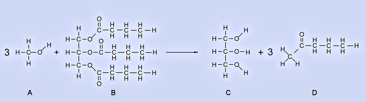 Transesterification converts A (methyl alcohol) and B (vegetable oil) into C (glycerin) and D (biodiesel) (Image: B. Dodson)