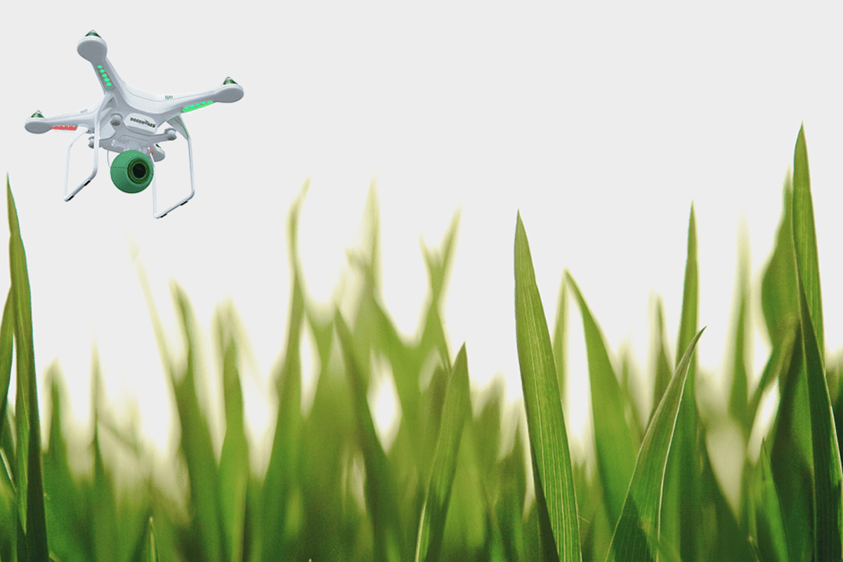 Could autonomous Watchdog 1's one day hover over streets and public parks on the lookout for freshdroppings?