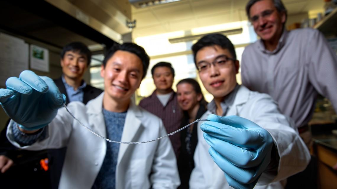 Dubbed TRAFFIC (Thread-Reinforced Alginate Fiber for Islets enCapsulation), this implantable thread is a potentially game-changing medical device