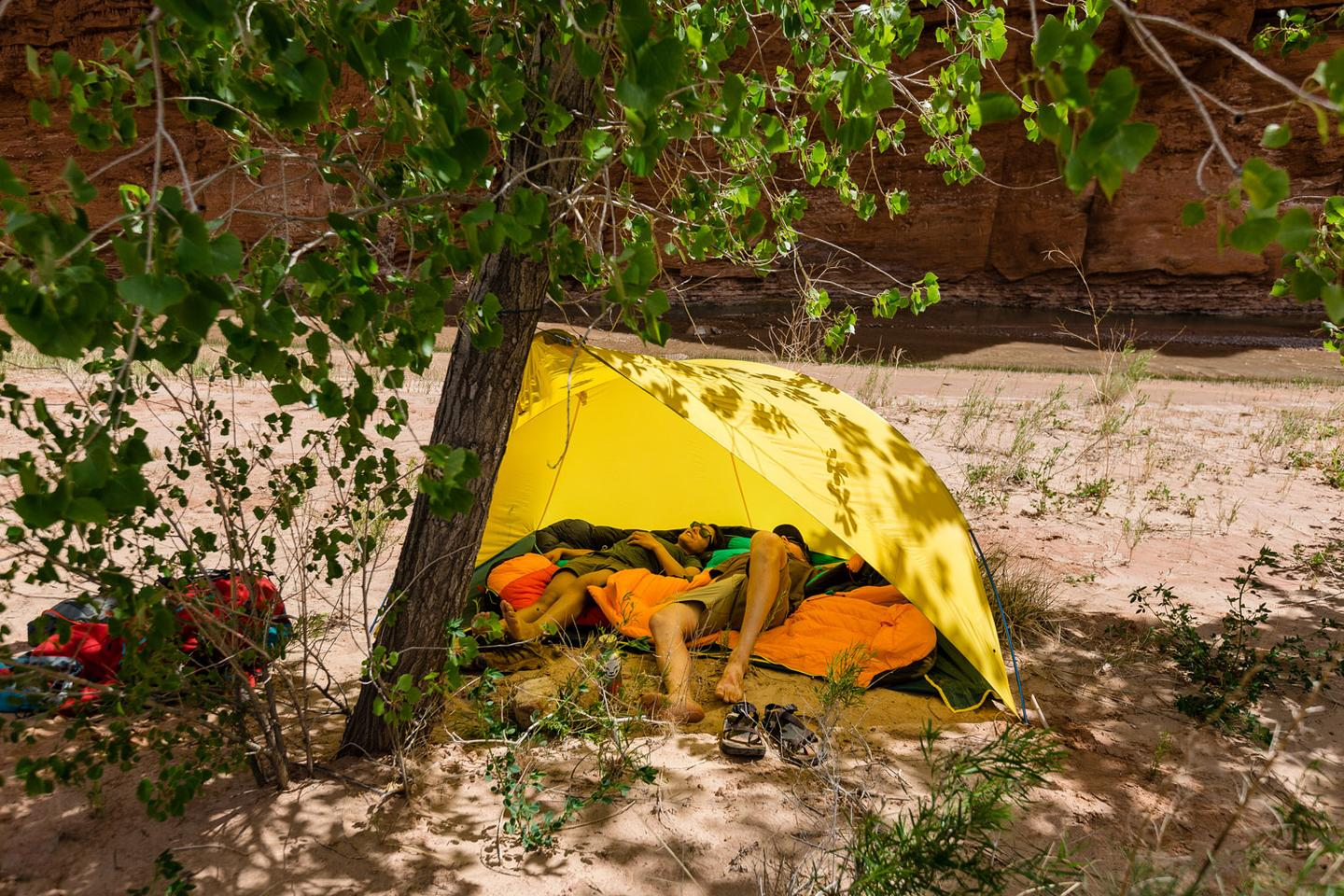The alcove pitches with help from a tree or two trekking poles