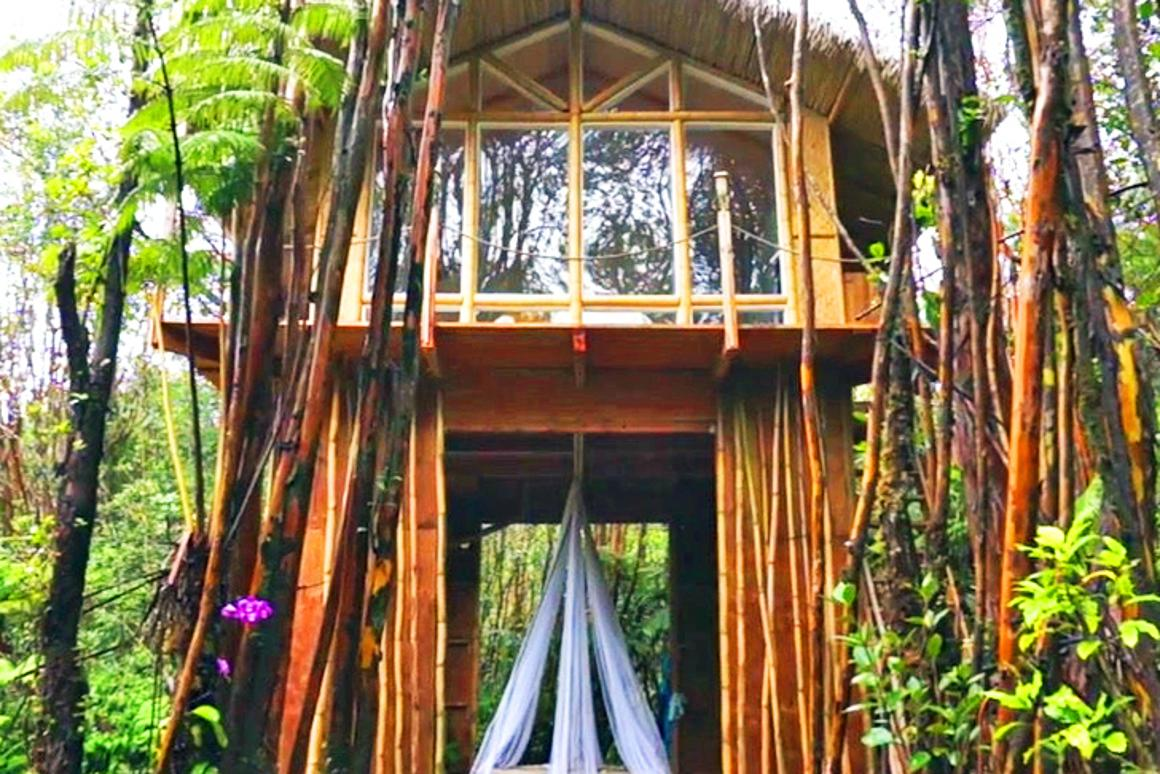Kristie Wolfe's tiny vacation home in Hawaii (Photo: Kristie Wolfe)