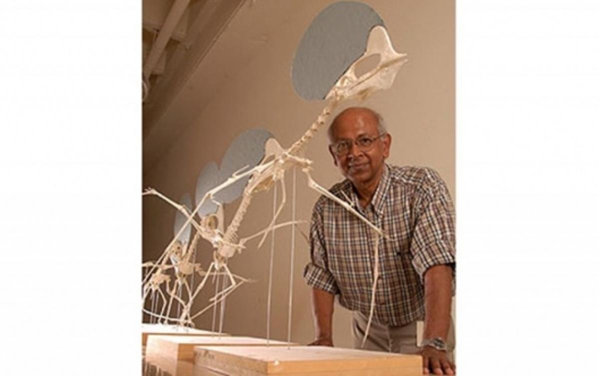 Texas Tech University paleontologist Sankar ChaterjeeImage: Texas Tech University (http://today.ttu.edu/)