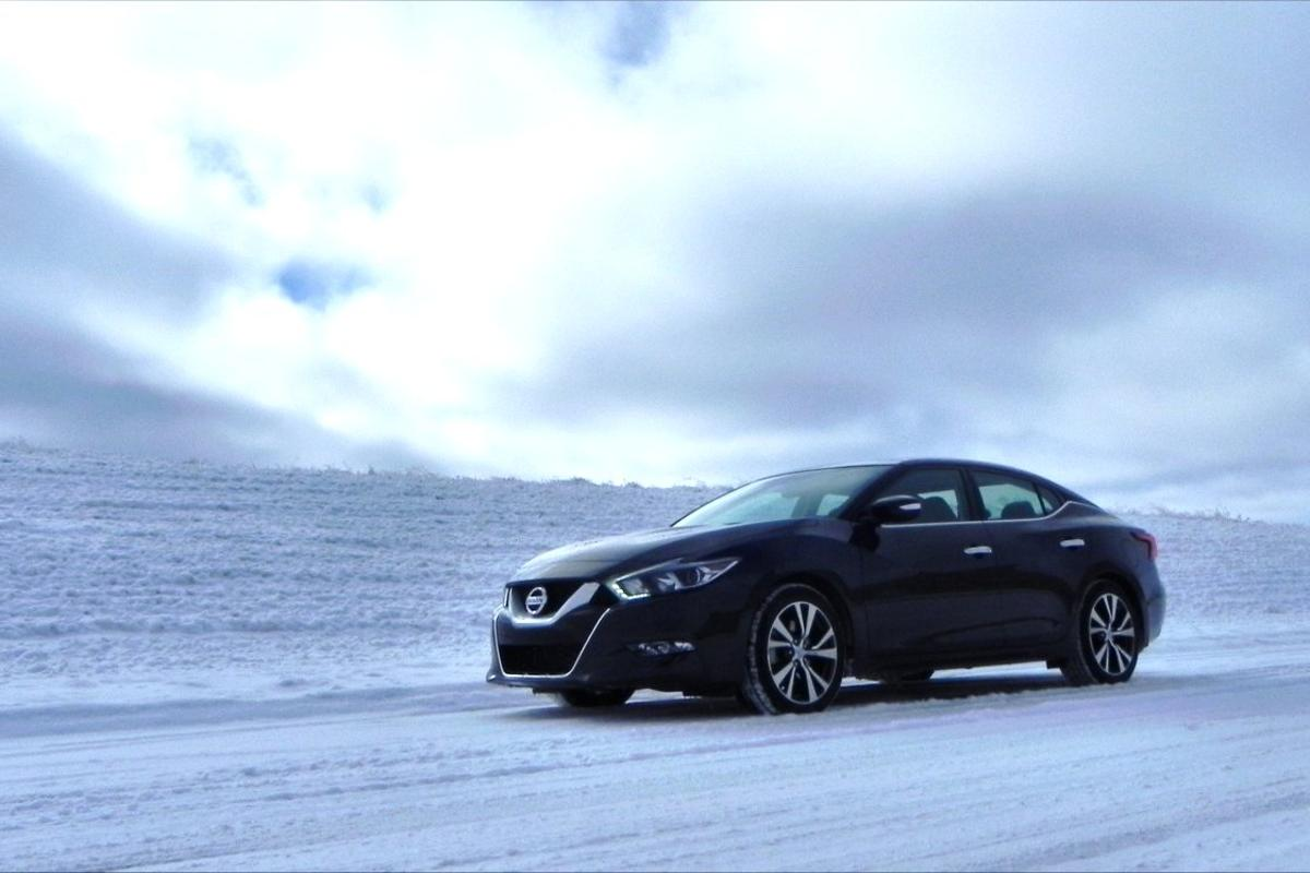 The Maxima has a very distinct style that is a combination of edgy sport credibility and concept car wow factor