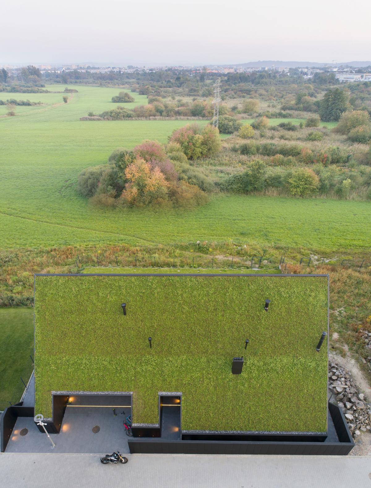 House behind the Roof has some sustainable features, including a green roof and solar panels