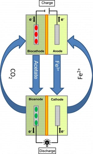 The proof of concept microbial rechargeable battery combines microbial electrosynthesis and a microbial fuel cell in one system