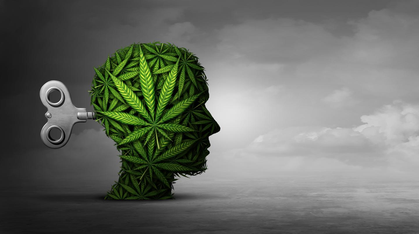 CBGA is converted into more well-known cannabinoids as a cannabis plant matures