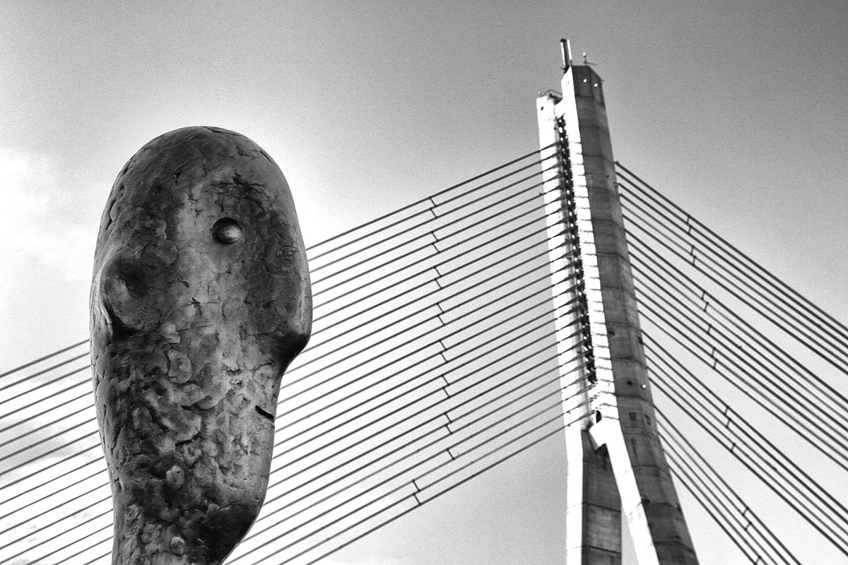 """He and the bridge, by Oleg Dashkov, was taken in Riga, Latvia, using a Canon EOS 60D. """"Riga's Tower Counter keeps his records during any season rain or shine, wet or fine. Is he distracted by the beauty of the cable bridge I wonder?"""" says the photographer"""