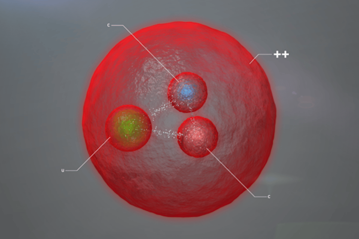 "CERN scientists have announced the discovery of a new particle, which contains two heavy ""charm"" quarks"