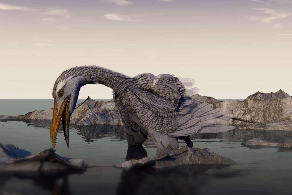 Scientists think thatthe beak ofIchthyornis dispar evolved as a surrogate hand