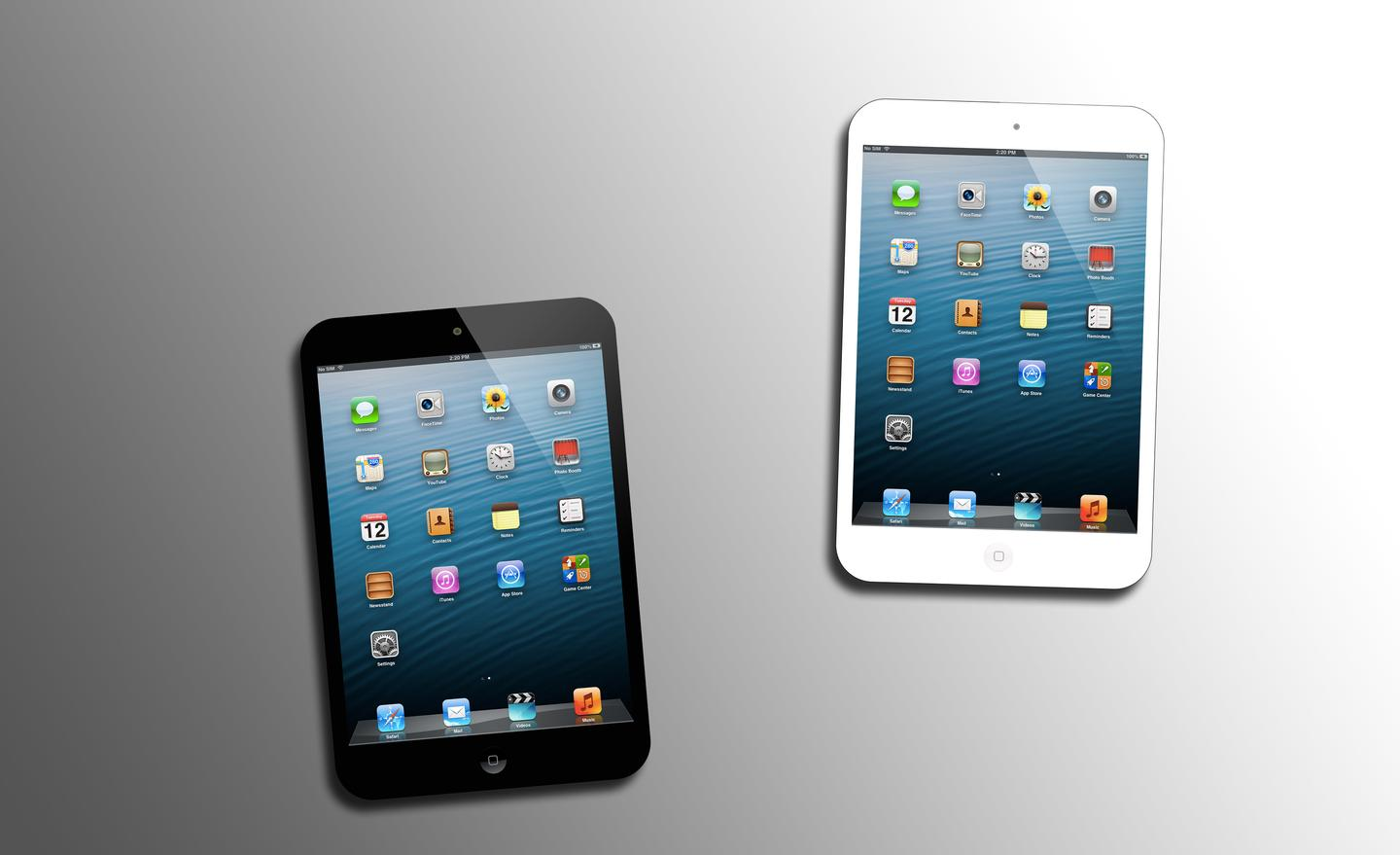 We'll likely see black and white models of the iPad mini