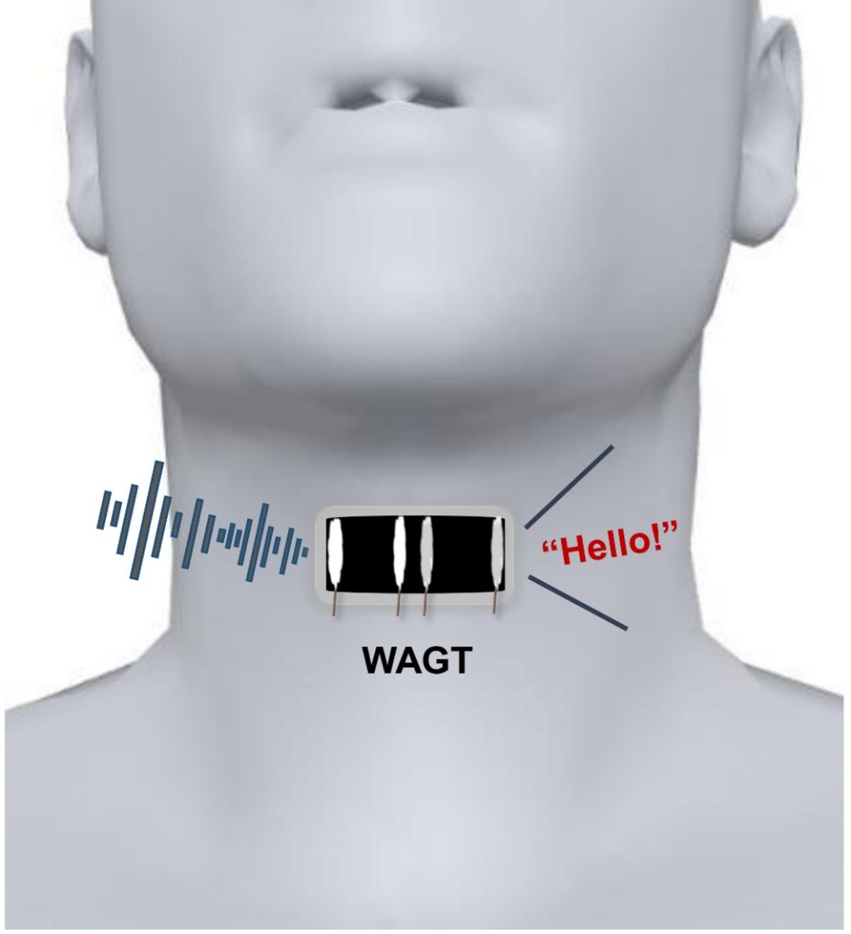 A diagram of the Wearable Artificial Graphene Throat