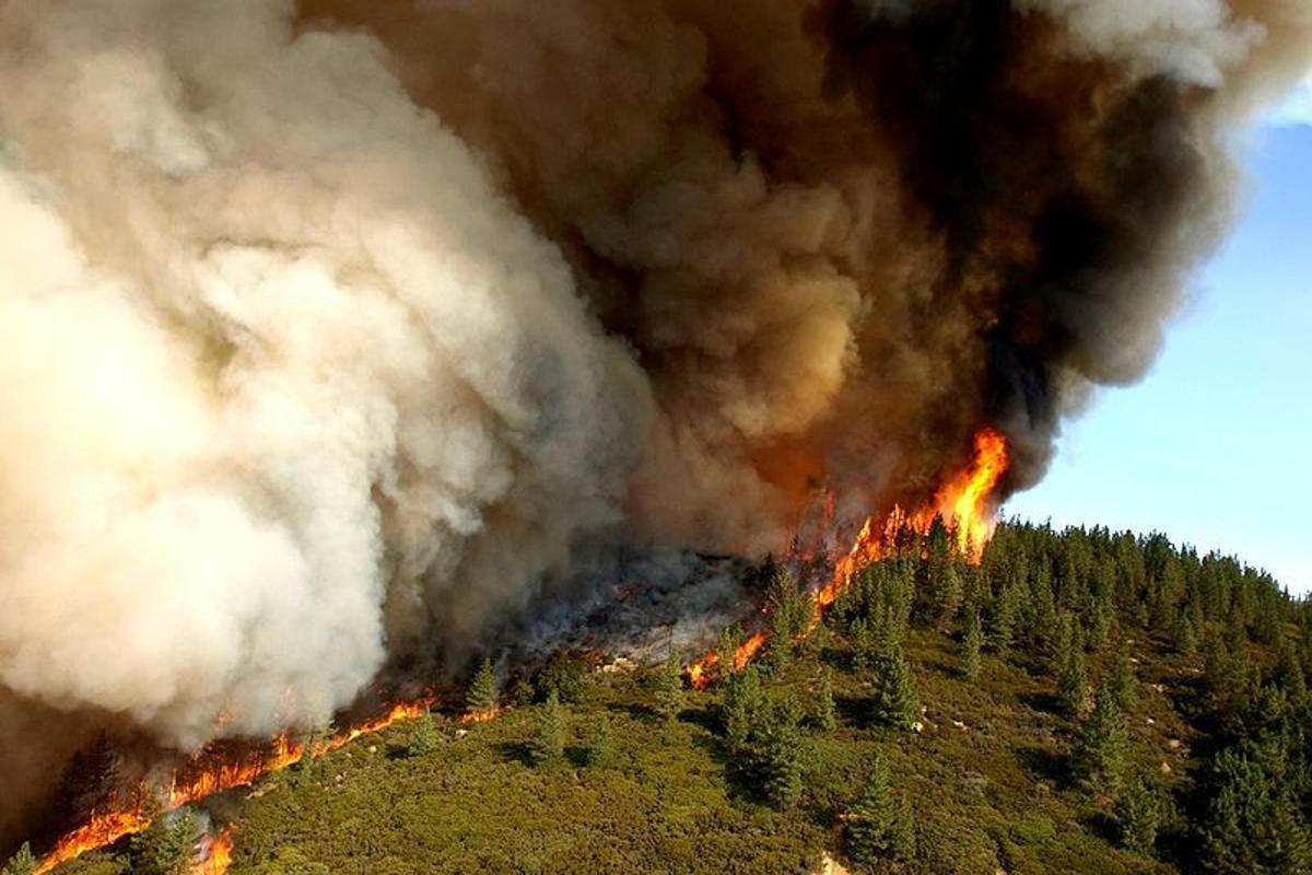 Zaca Fire, near Santa Barbara, California, in 2007. Credit: U.S. Forest Service by John Newman