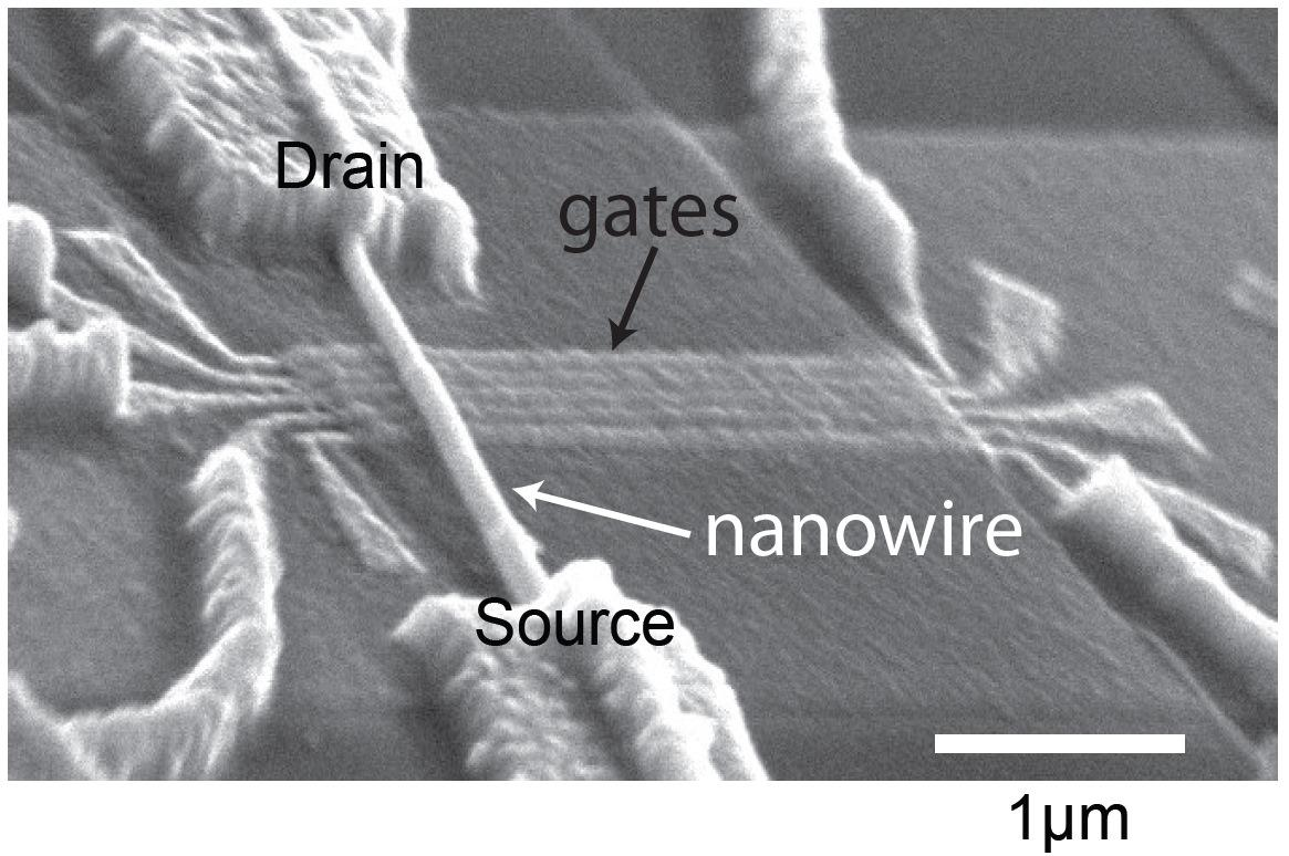 Scanning electron image of the nanowire device with gate electrodes used to electrically control qubits, and source and drain electrodes used to probe qubit states