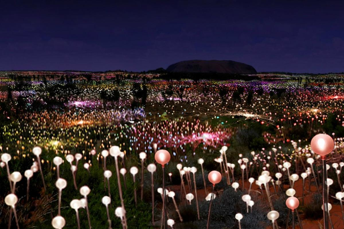 Bruce Munro's vision to transform the Australian desert landscape around Uluru